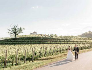 Stunning couple at always beautiful @goriska_brda . @sanjskaobleka . . . . . #anjainmiha2019 #gredic #goriskabrda #poroka #porocnifotograf #vineyard #couple #justmarried #stylemepretty #weddingchicks #beautifulday #sunnyday #groom #bride #sloveniaphotographer #weddinginslovenia #italyweddingphotographer #italyphotographer
